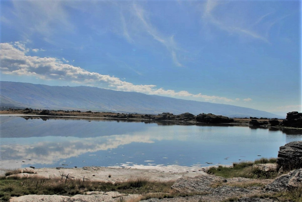 Sutton Salt Lake
